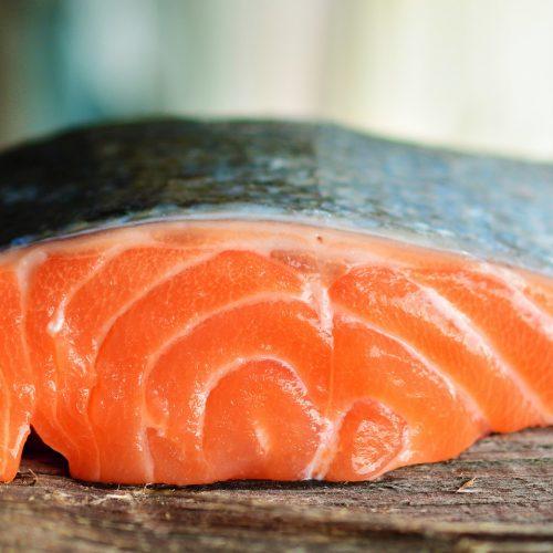 salmon-3139390_1920